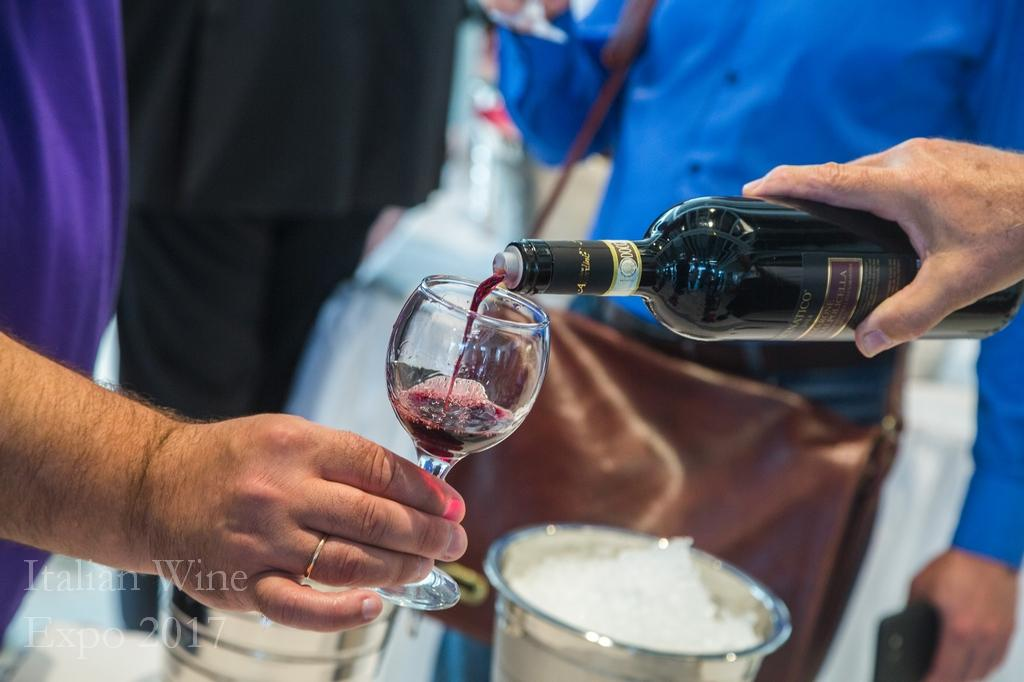italian wine expo 2017 kyiv tsum